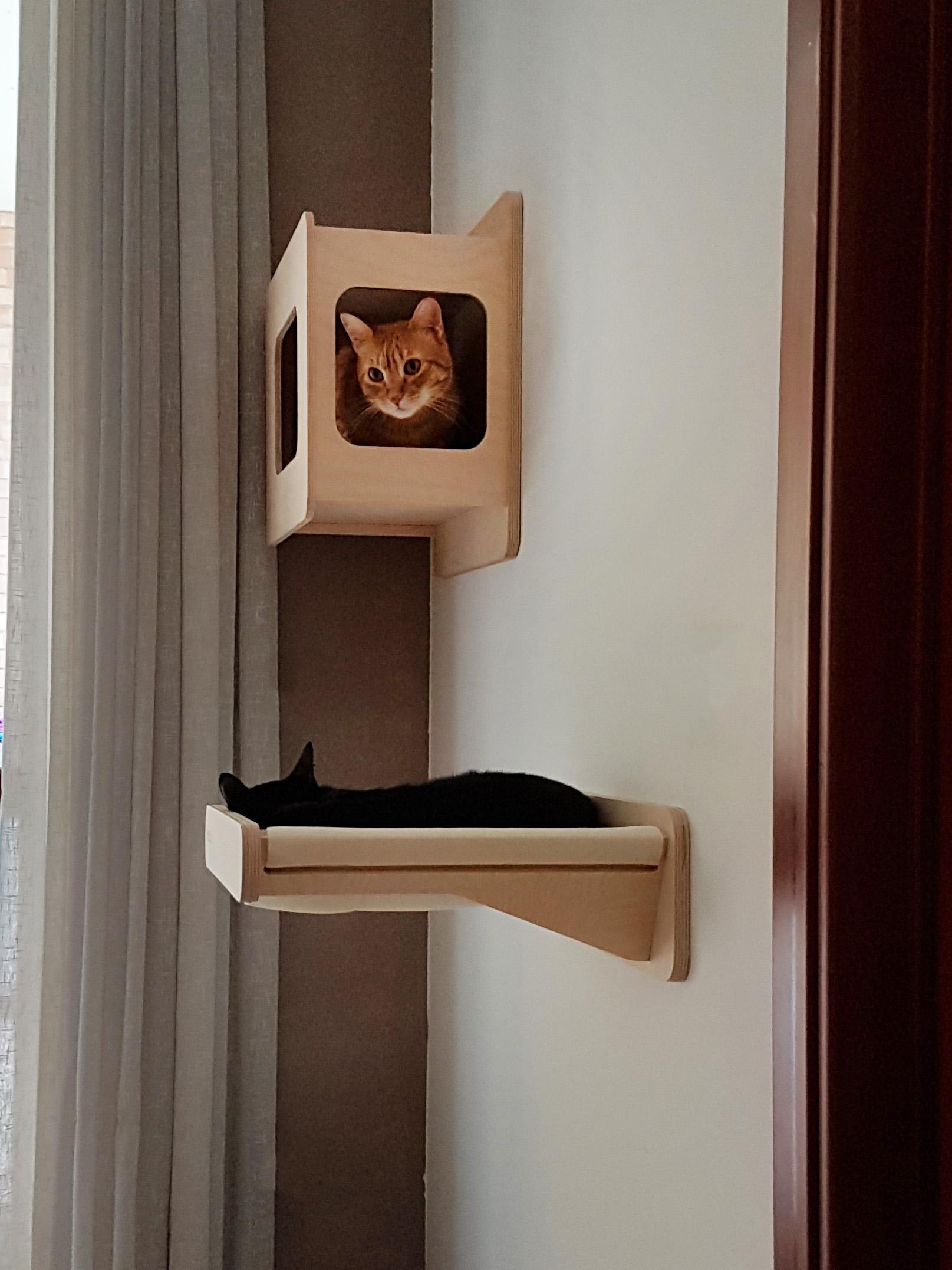 Costruire Cuccia Per Gatti pareti attrezzate per gatti in legno naturale: design e