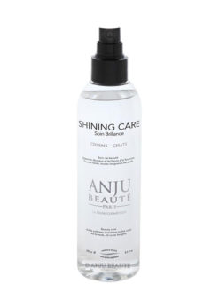 Spray Shining Care splendore by Anju Beauté
