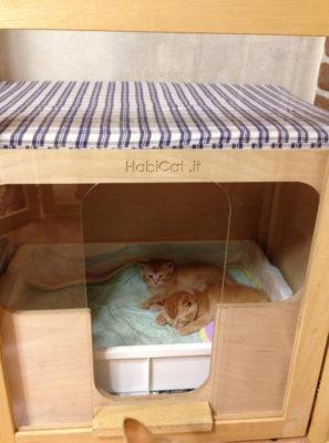 Nursery Habicat