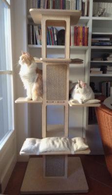 Towercat 2.0