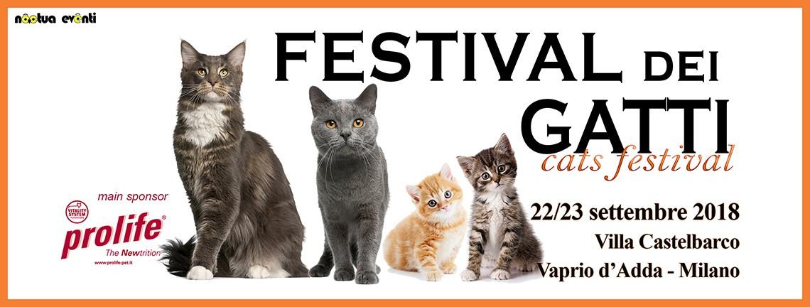 Festival dei Gatti 2018
