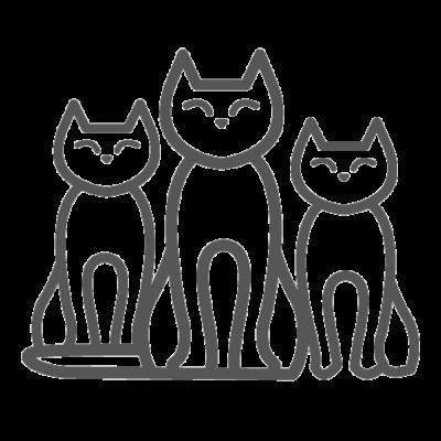 tanti gatti