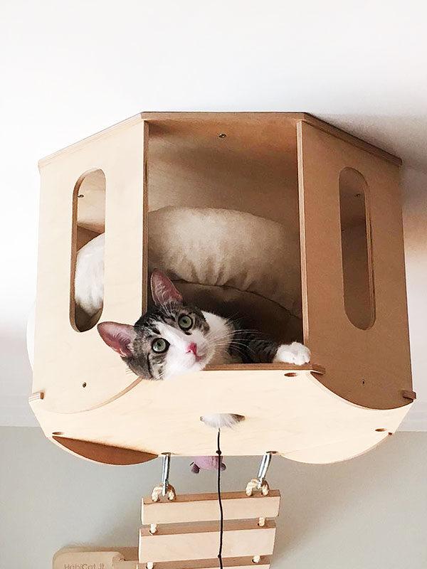 Rifugio da soffitto